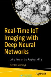 Real-Time IoT Imaging with Deep Neural Networks