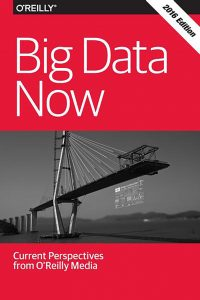 Big Data Now 2016 Edition